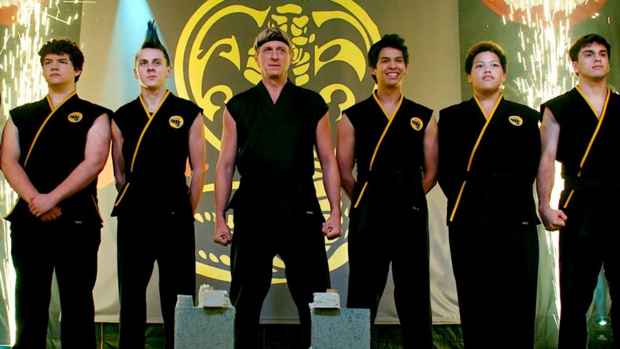 Cobra Kai: The Karate Kid spinoff