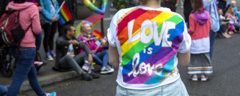Stuck in the Closet: a LGBTQIA+ story